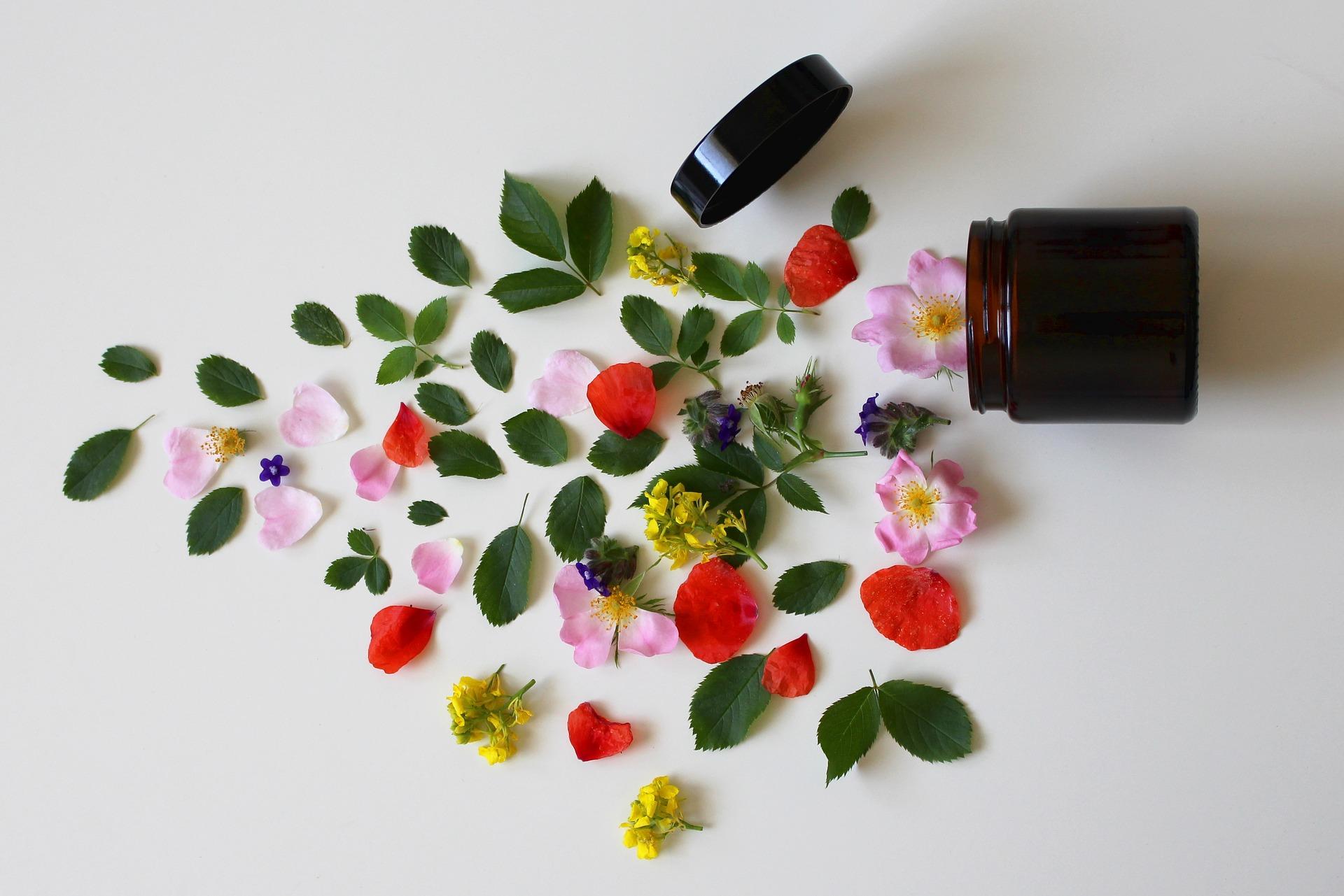 natural cosmetics 3397277 1920 - Activités et stages - OCA Bonneville